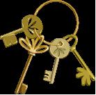 picto clés dorées